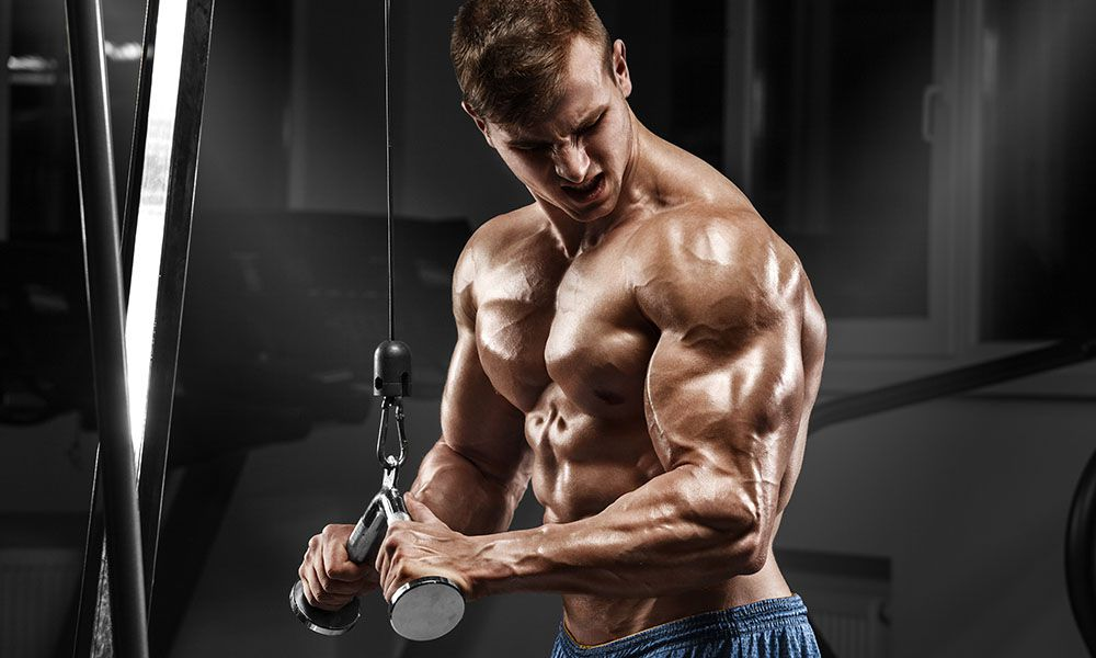 Triceps Workout – The Key to Bigger Arms